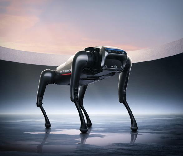 xiaomi-cyberdog-5.jpg   Image